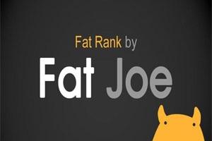 Wat is de Fat Joe rank?