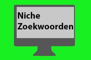 Wat zijn nichezoekwoorden?
