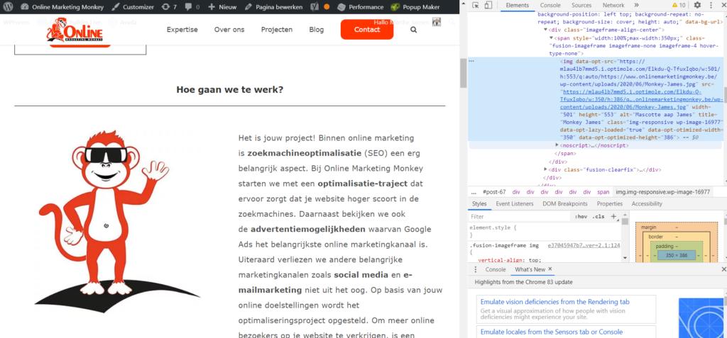 HTML code alt tag