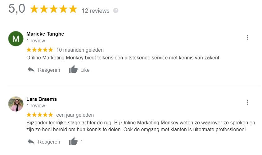 De Google reviews van Online Marketing Monkey